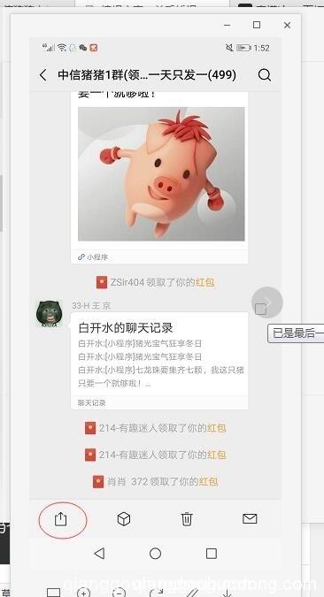 阿达 带玩中信猪猪